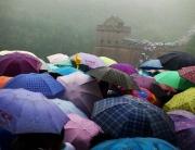umbrellas669x400