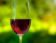 gordons-view-china-and-wine